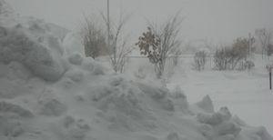 IMG_4893雪景色
