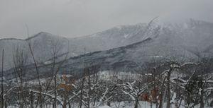 IMG_4926高社山