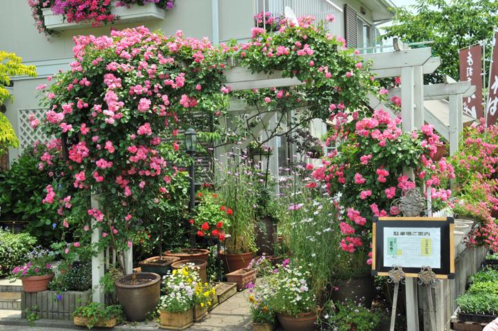 花やお店1