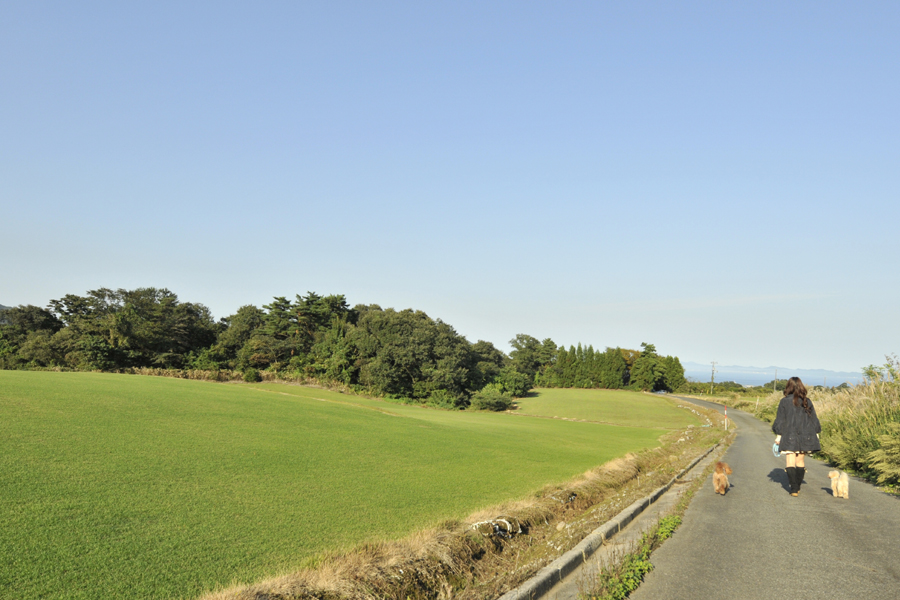 03お散歩03