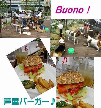 s-nikki4_20081010134919.jpg