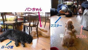 s-nikki5_20081010134931.jpg