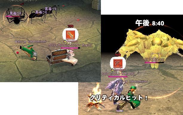 3_20081102034958.jpg