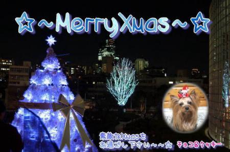 """(*б-б)ノ☆;:*:;☆""""Merry*Christmas""""☆;:*:;☆ヽ(δ-δ*)"""