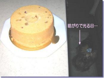 サツマイモのシフォンケーキ