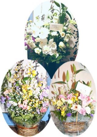心癒やされます~お花
