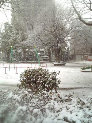 雪だ~~~!!