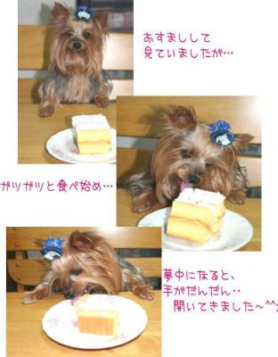 紅芋のケーキを食べる!
