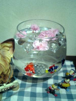水にお花を浮かべて♪