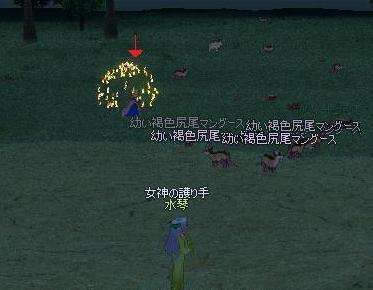 mabinogi_2009_08_04_003.jpg