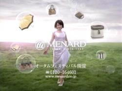 FKA-Menard0805.jpg