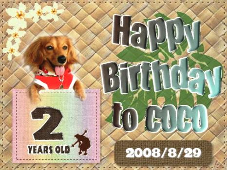 card20cococ200829.jpg