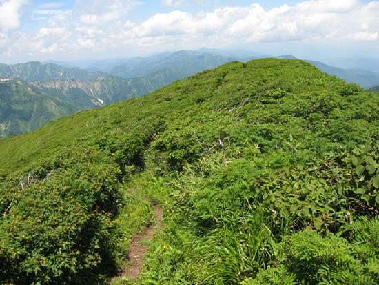 竜門山の山頂
