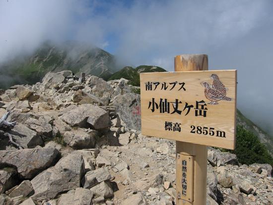 小仙丈ケ岳のピーク