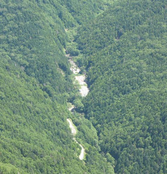 北沢峠のキャンプ指定地