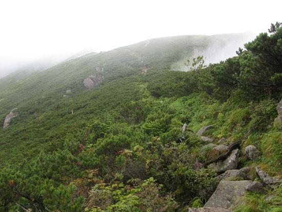 ガスった登山道