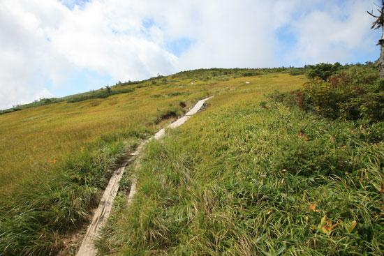 草原の中の木道