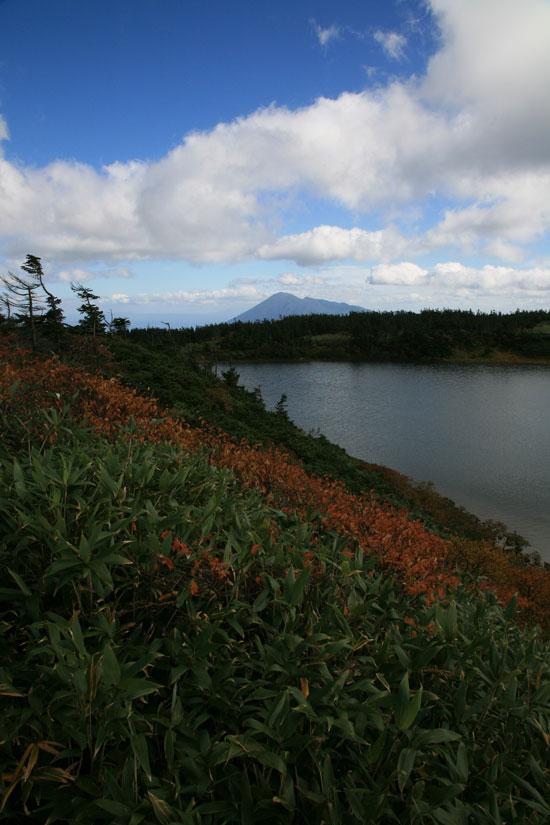 ガマ沼と岩手山