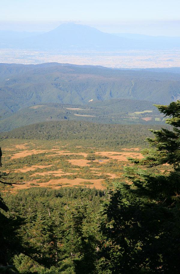 岩木山と湿原