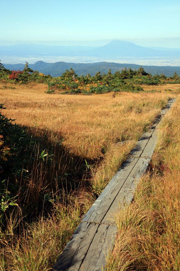 岩木山と紅葉湿原