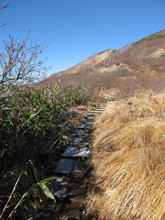 木道の坂道