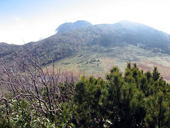 黒沢地と妙高山