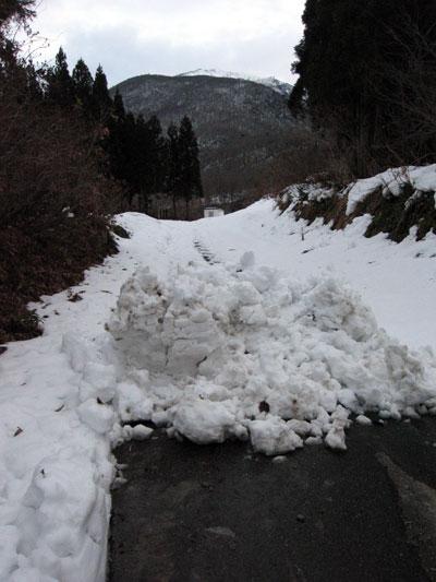 除雪はココまで