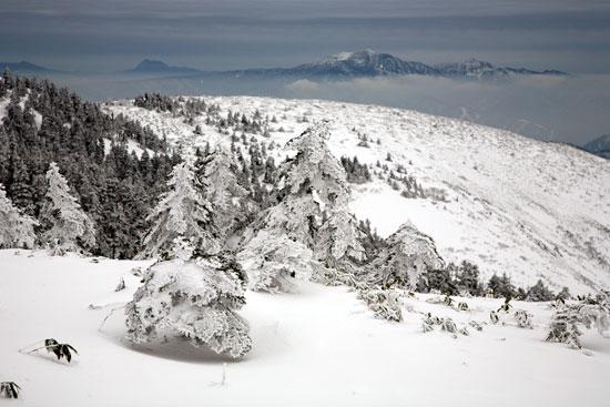 雪の状況2