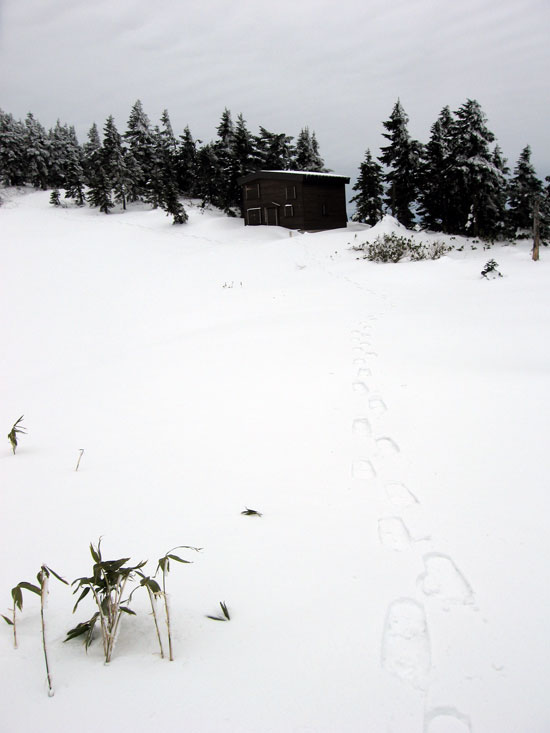 小屋までの足跡