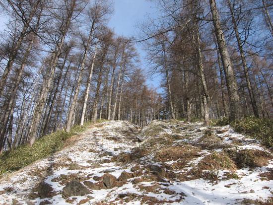 雪の道を登り