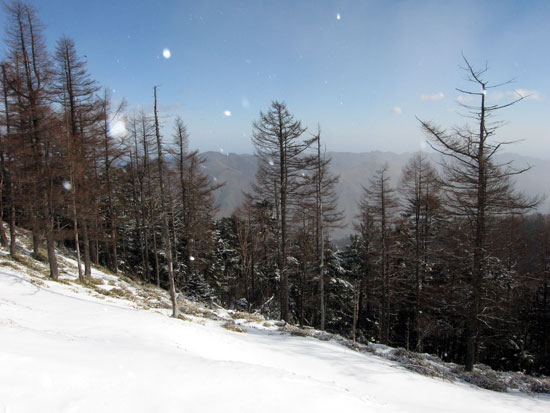 雪が舞う山頂