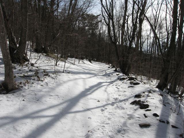 雪の上を歩いて