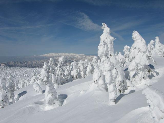 朝日連峰と樹氷
