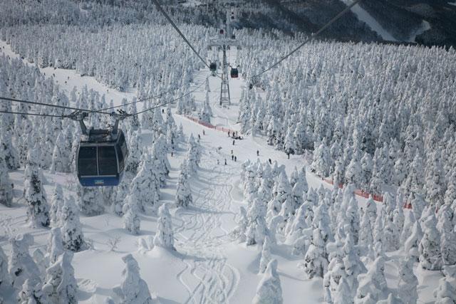スキーコース