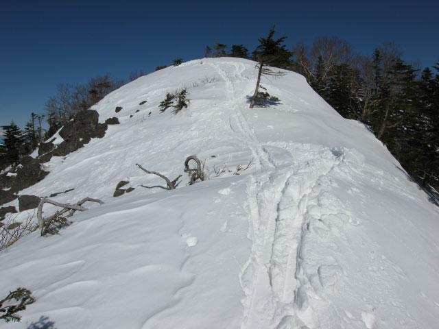 スキーのトレース
