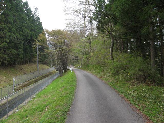用水路と並行する道