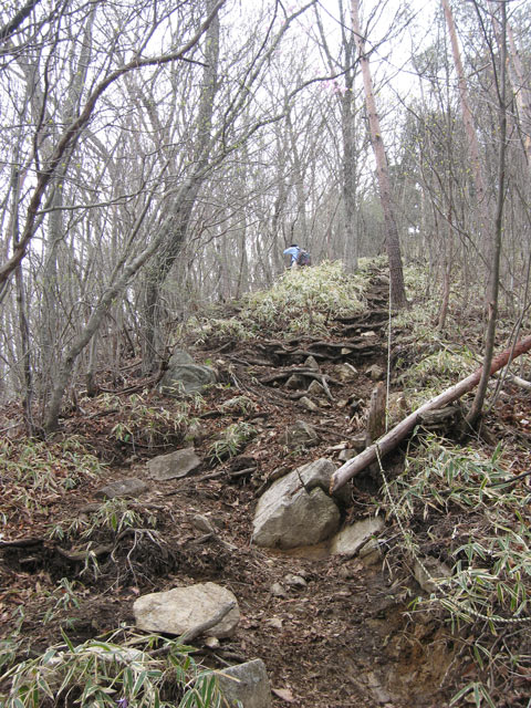 ロープのある坂道