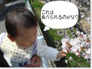 photo_33.jpg