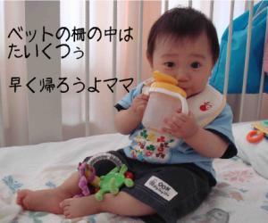 photo_37.jpg