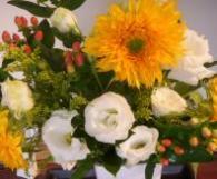 flower_20090706