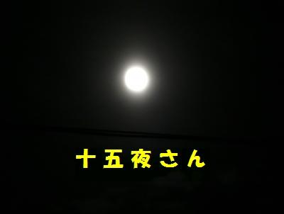 10-03-1.jpg