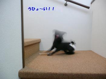 6-1-8-1.jpg