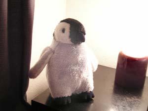 ベビーペンギンぬいぐるみ