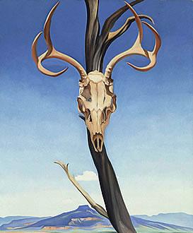 鹿の頭蓋骨とぺダーナル