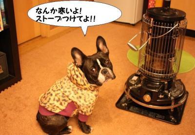 寒いんですけど~