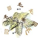 羽毛布団4