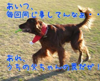 LnWT_yI6.jpg