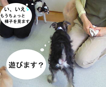 NEC_0143.jpg