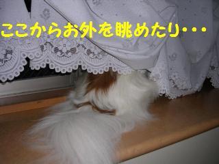 20050825150148.jpg