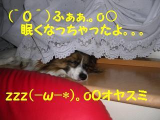 20050825150224.jpg